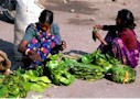 Women make plates and bowls from Sal leaves, Ranchi